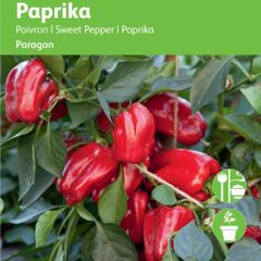 Foto: Paprika 'Patio Paragon'