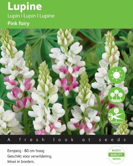 Foto: Lupine 'Pink Fairy'