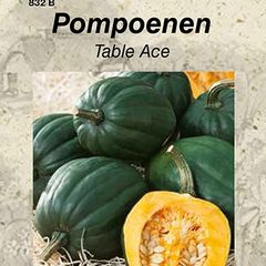 Foto: Pompoen 'Table Ace'