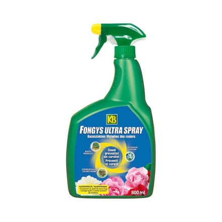 Kb Fongys Ultra Spray 800ML