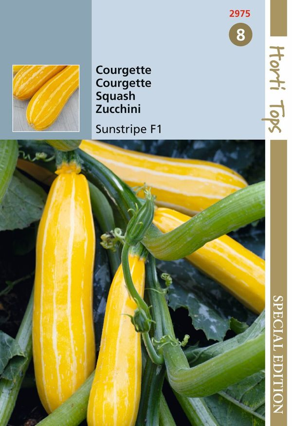Hortitops Hts Courgette Sunstripe F1, Geel