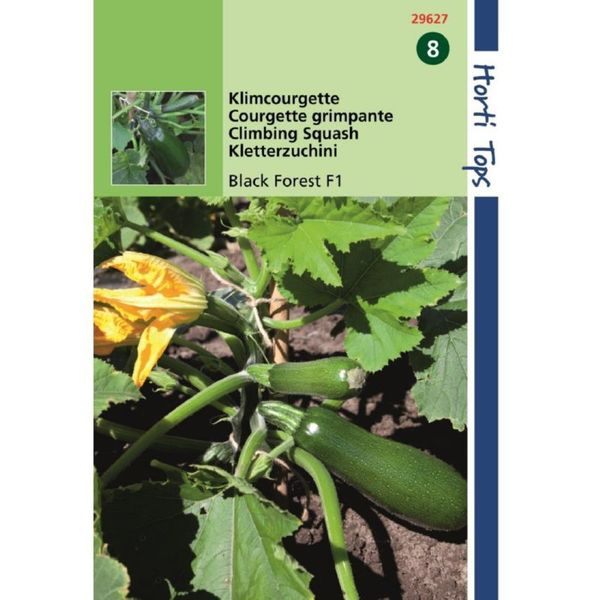 Hortitops Ht Courgette Black Forest F1 (Klimmend)