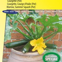 Sluis Garden Courgette Patio Star F1 (Pot)