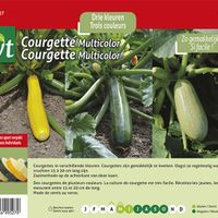 Zaadset Courgette Multicolor